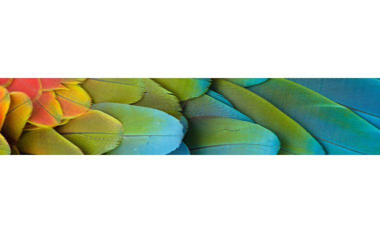 Details zu Küchenrückwand  Folie Klebefolie Spritzschutz - spritzschutz küche folie