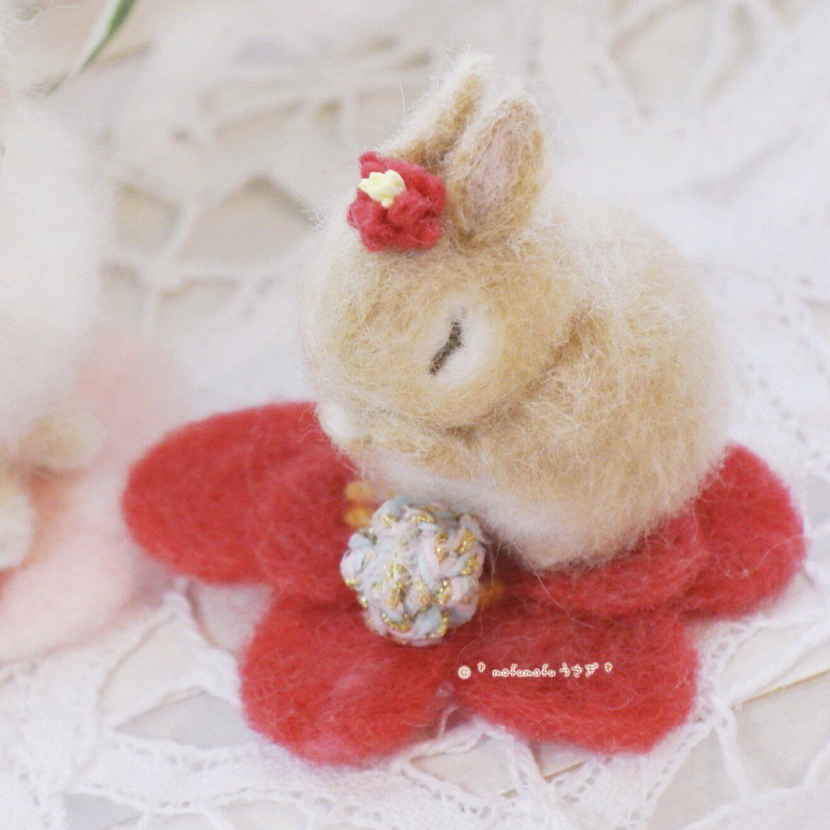 Cocomi 2 3ws ハウスオブラビット Coco Mirumiru Twitter Teddy Coco Teddy Bear