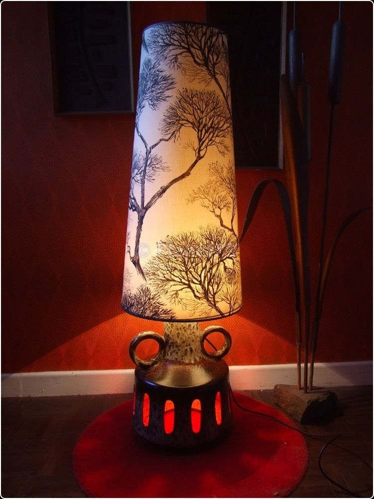 Huge Lava Lamp Extraordinary Retro Vtg 60S 70S West German Fat Lava Huge Floor Lamp Twin Bulb Inspiration Design