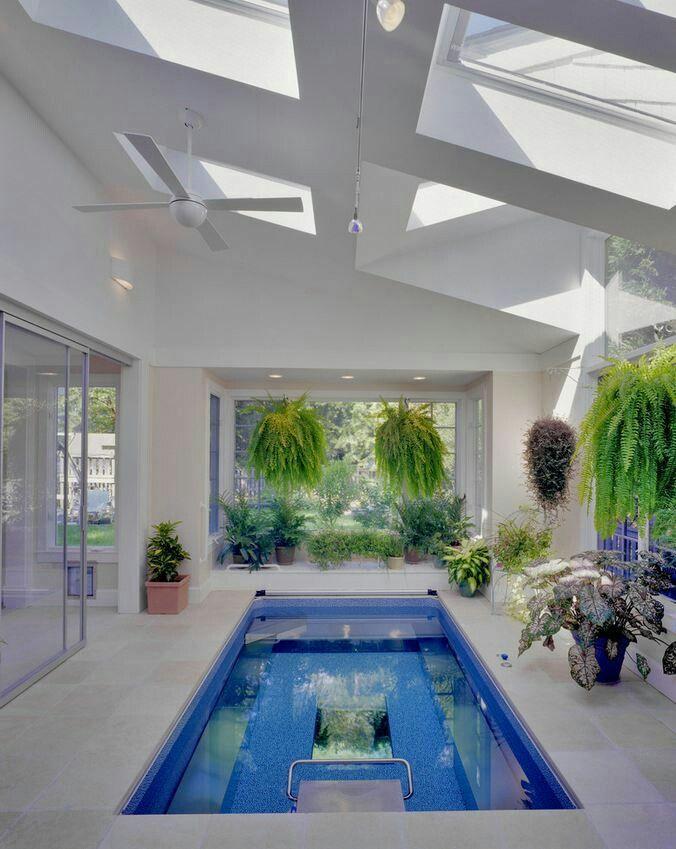 в7 бассейн с окнами и зеленью чтобы много плавать и быть на природе даже зимою закрытые бассейны современные бассейны домашний бассейн