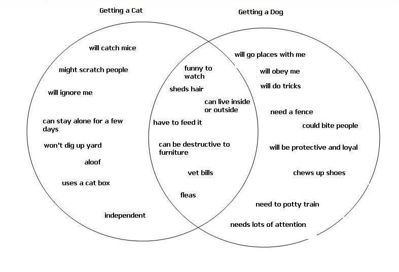 Describe A Venn Diagram Projects To Try Essay Examples Compare