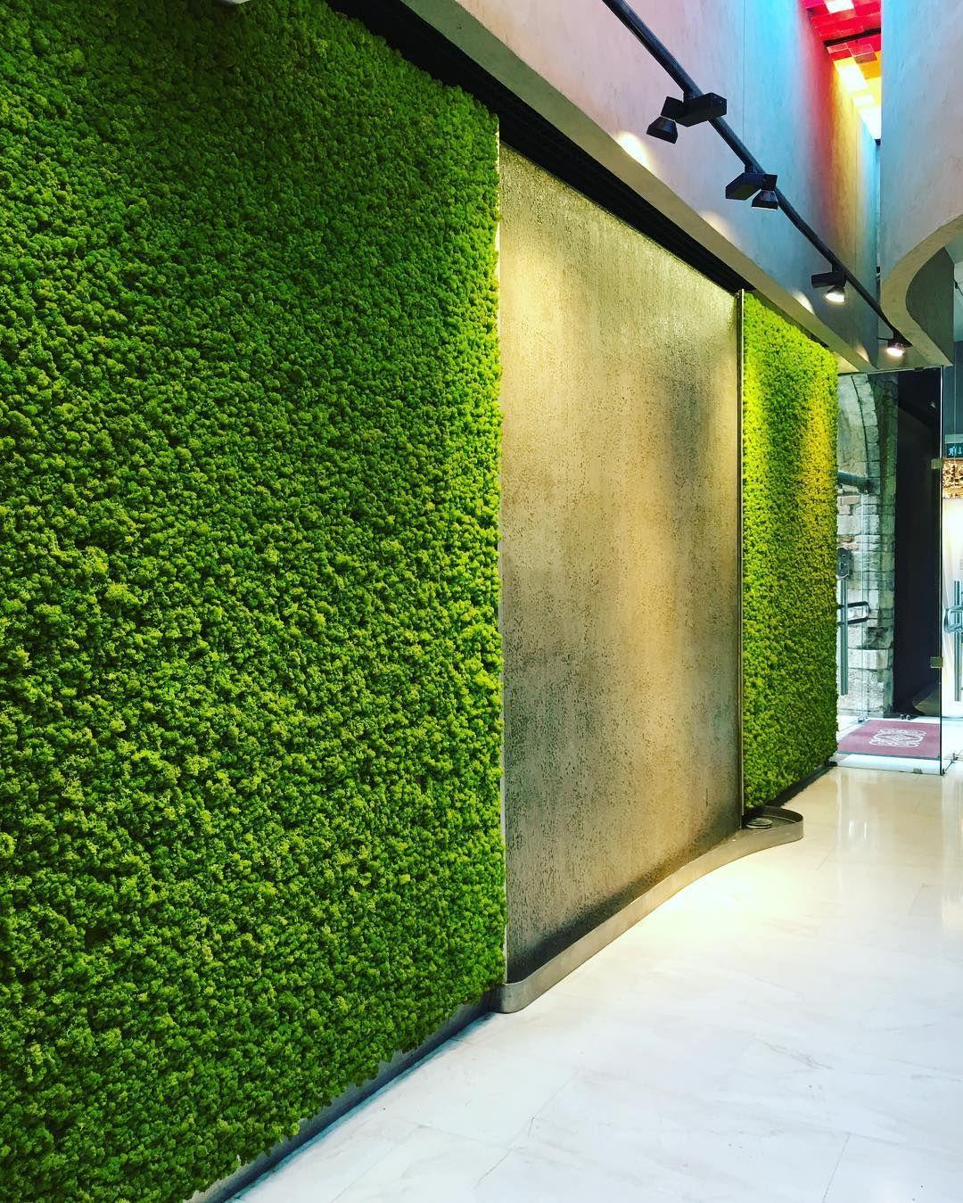 Swanky hotel lobby in Verona. Water feature & moss walls
