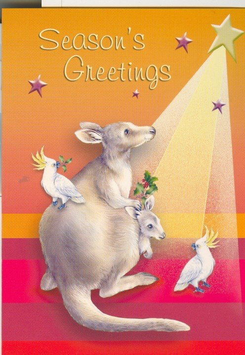 Christmas Cards From Australia In 2020 Christmas Cards Aussie Christmas Australian Christmas