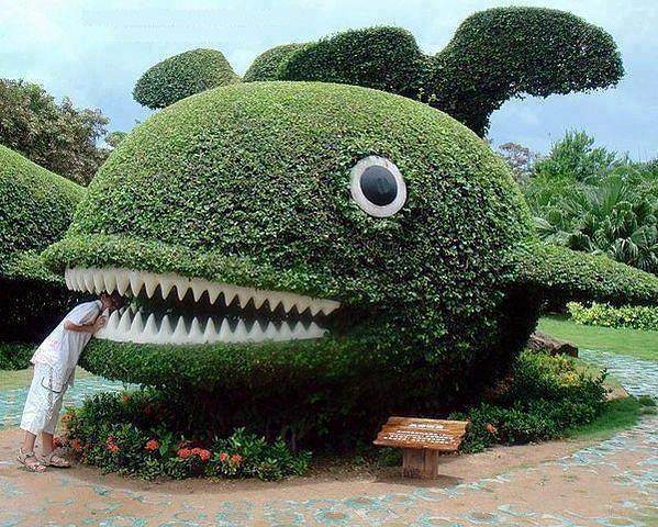 Consejos para tener un jard n arom tico jardiner a - Jardines de ensueno ...