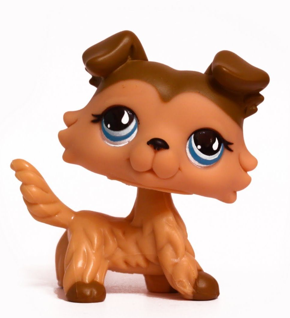 I Need This Lps Ive Wanted Her For 3 Years Now Lps Collies Lps Littlest Pet Shop Lps Dog