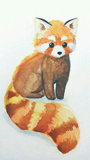 red panda art in 2018 pinterest panda red panda and drawings