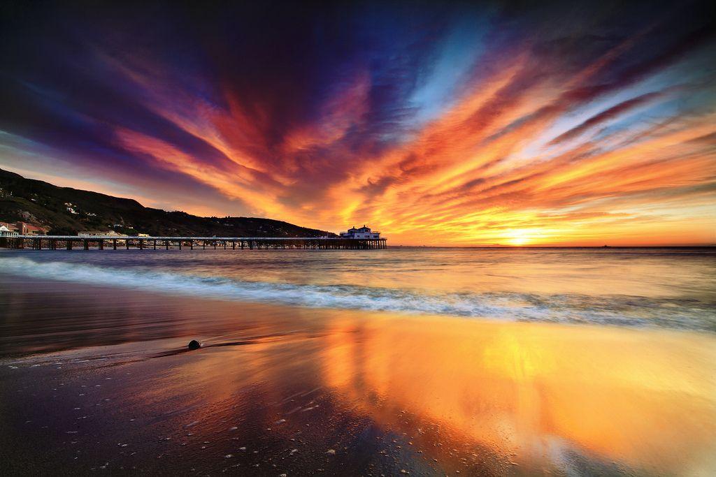 "Wings, Malibu, California (by â""¢ Pacheco)"