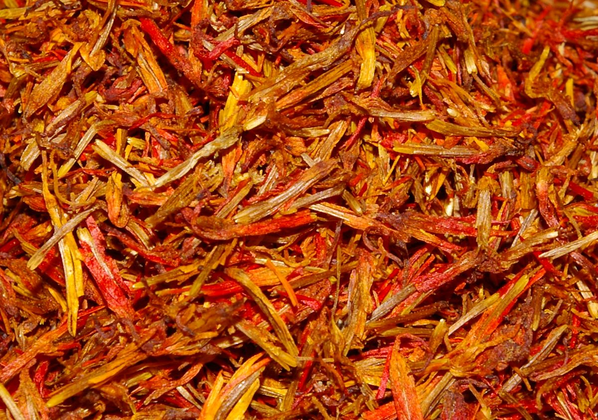 Saffron Harvest Info: How And When To Pick Saffron ...