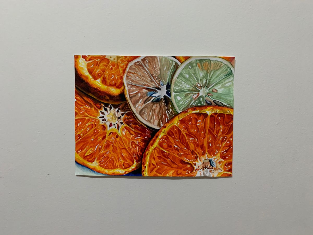 Citrus- inspired by frank spino in 2020 | My drawings ...