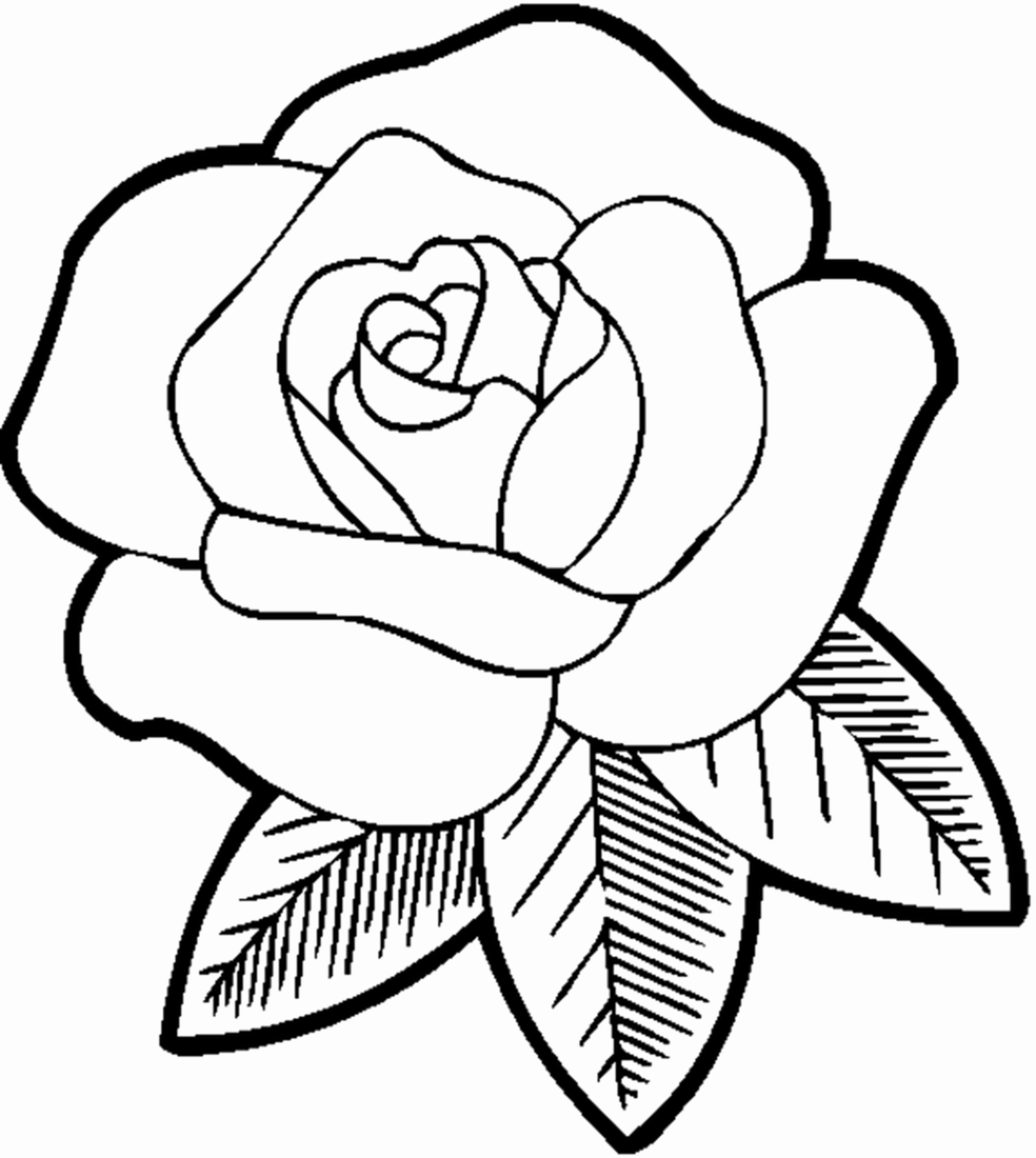 Easy Coloring Flowers Fresh Rose Flower Drawing Step Step At Getdrawings Rose Coloring Pages Printable Flower Coloring Pages Cute Coloring Pages
