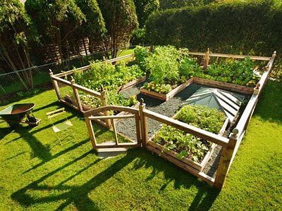Gemusebeet Planen Anlegen Ratgeber Auf Hagebau De Gemusebeet Gartengestaltung Gemusegarten Anlegen