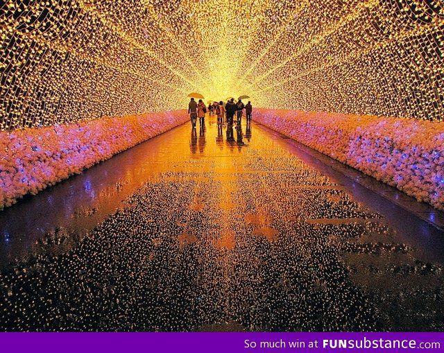 Light festival in japan
