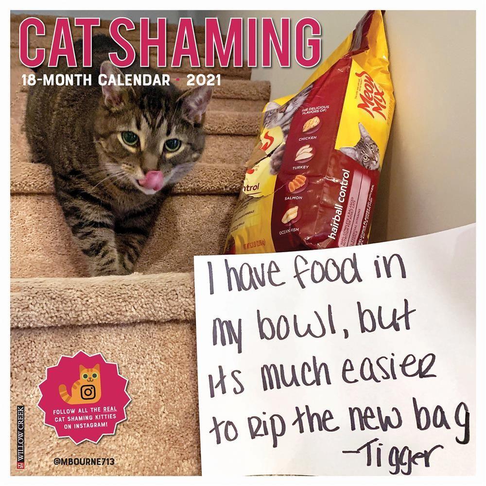 Cat Shaming 2021 Wall Calendar