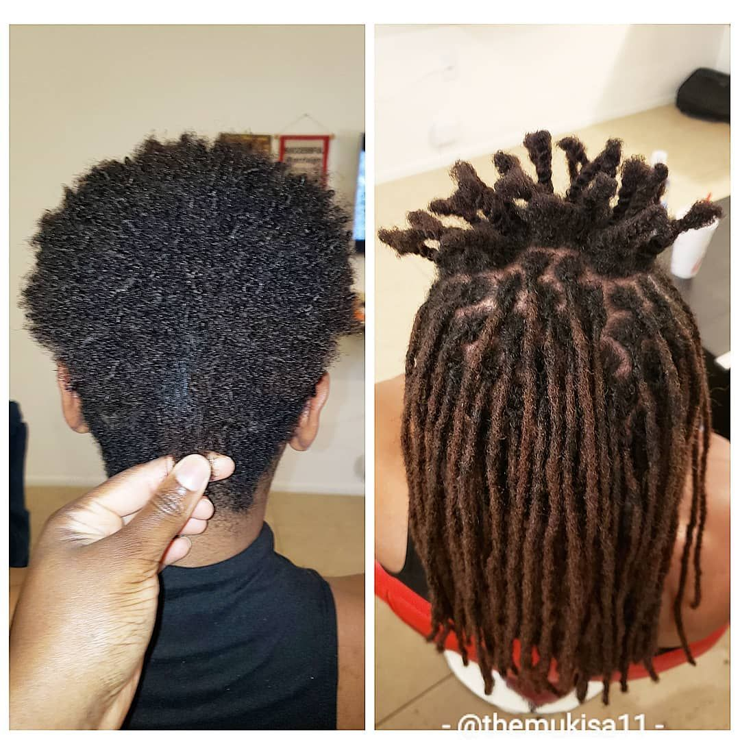 How To Start Dreads With Short Hair Dreads Short Hair Starting Dreads Short Hair Diy