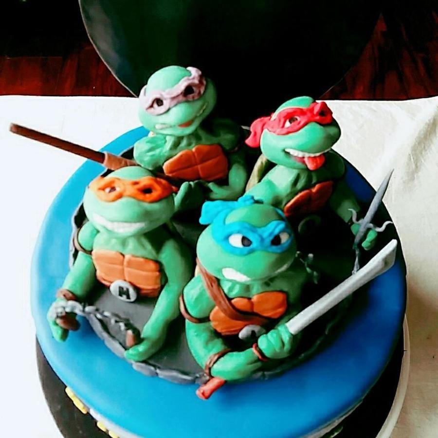 Teenage Mutant Ninja Turtles By Bakes By D Cupcake Cakes Teenage Mutant Ninja Turtle Cake Cake