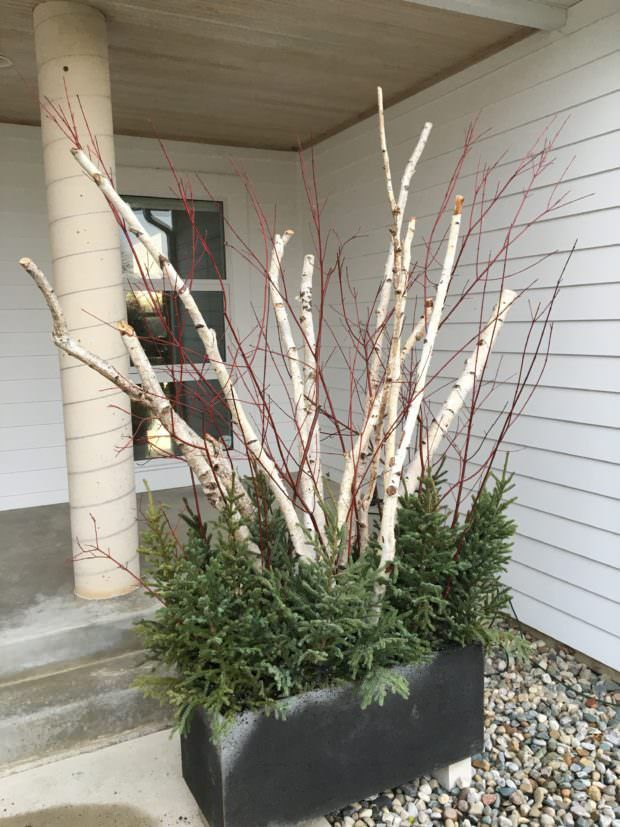 Great How To Make Winter Garden Planters | Garden Planters, Winter Garden And  Planters