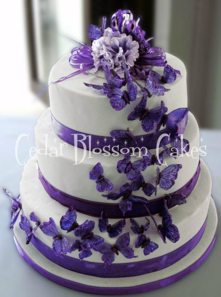 Purple Butterfly Cake This One Was Made With Me In Mind