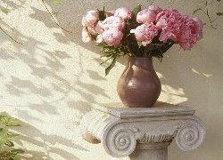 Piwonie Kwiaty Lato Peony Wallpaper Flowers Peonies