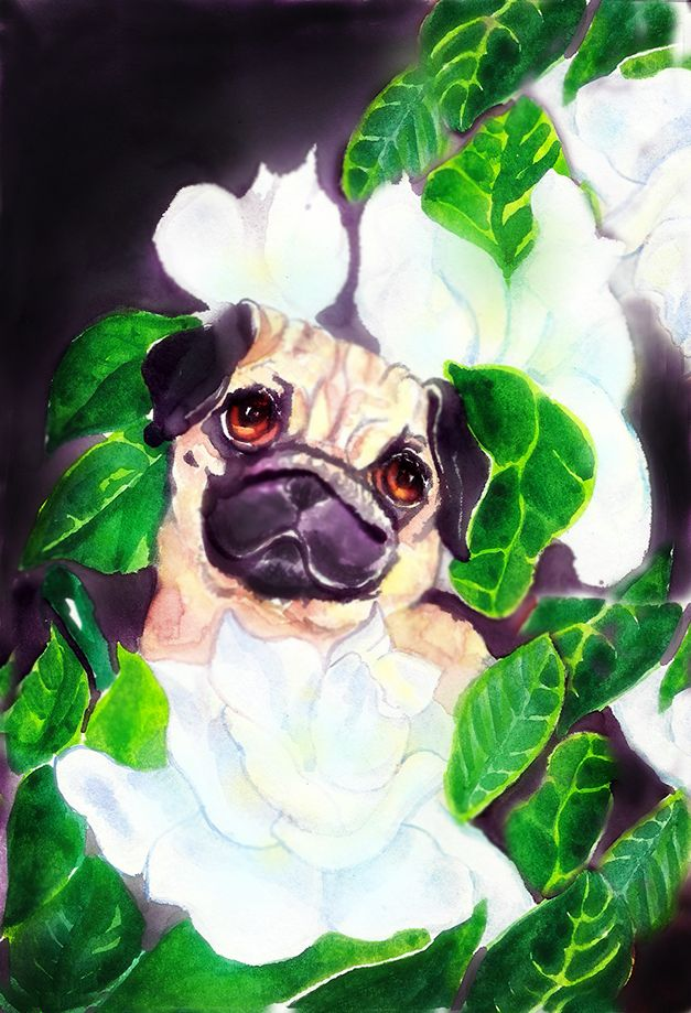 Pug And Gardenias Dog Art Painting Art