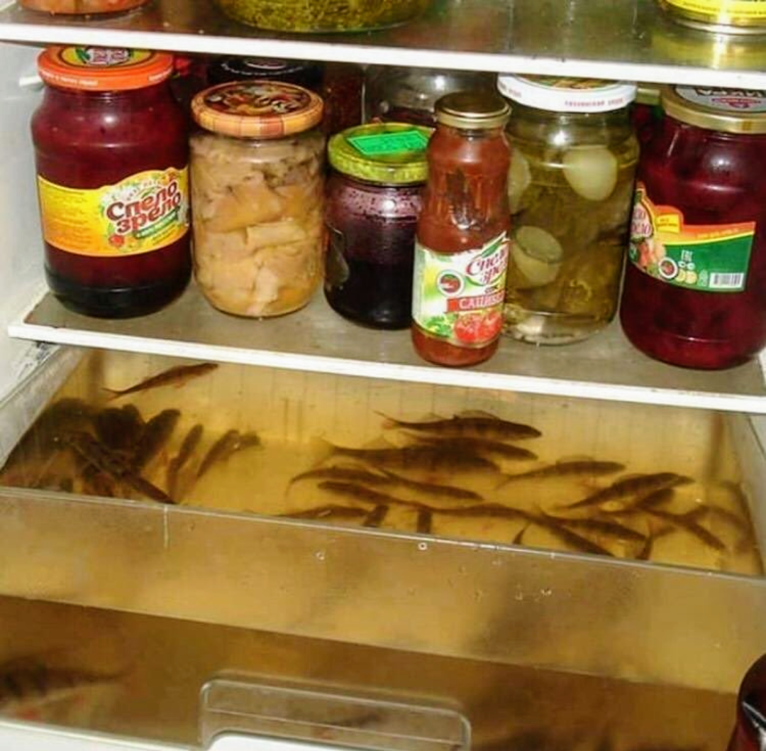Now For Something More Challenging : FridgeDetective