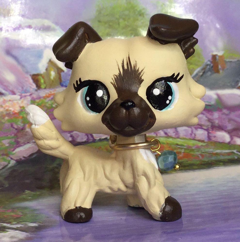 Littlest Pet Shop Dog Puppy Collie Ooak Custom Hand Painted