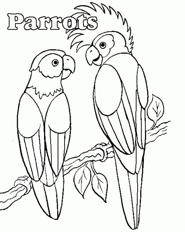 Free Parrot coloring sheets   Animal Coloring Pages   Pinterest ...