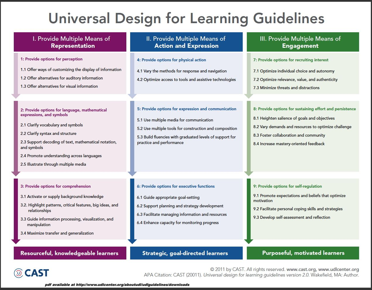 Universal Design For Learning Guidelines Chart