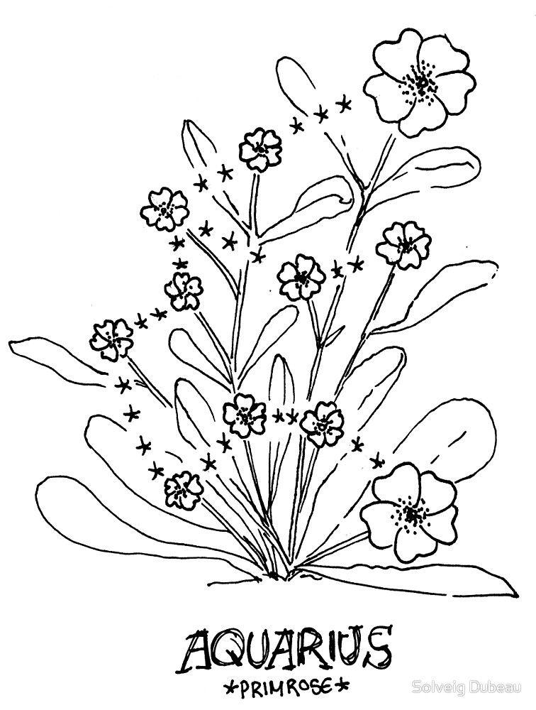 509b167d2 Floral Constellation - Aquarius by Solveig Dubeau | Body Mod ...