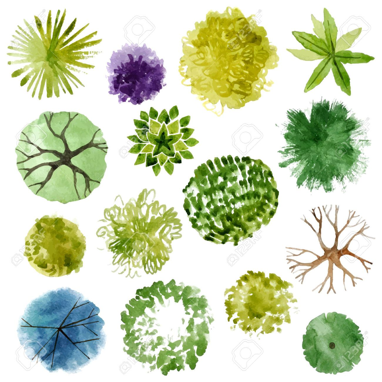 Image result for watercolor tree paintings pinterest for Ornamental kitchen garden design