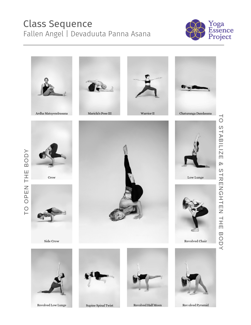 Yoga Sequence Themes