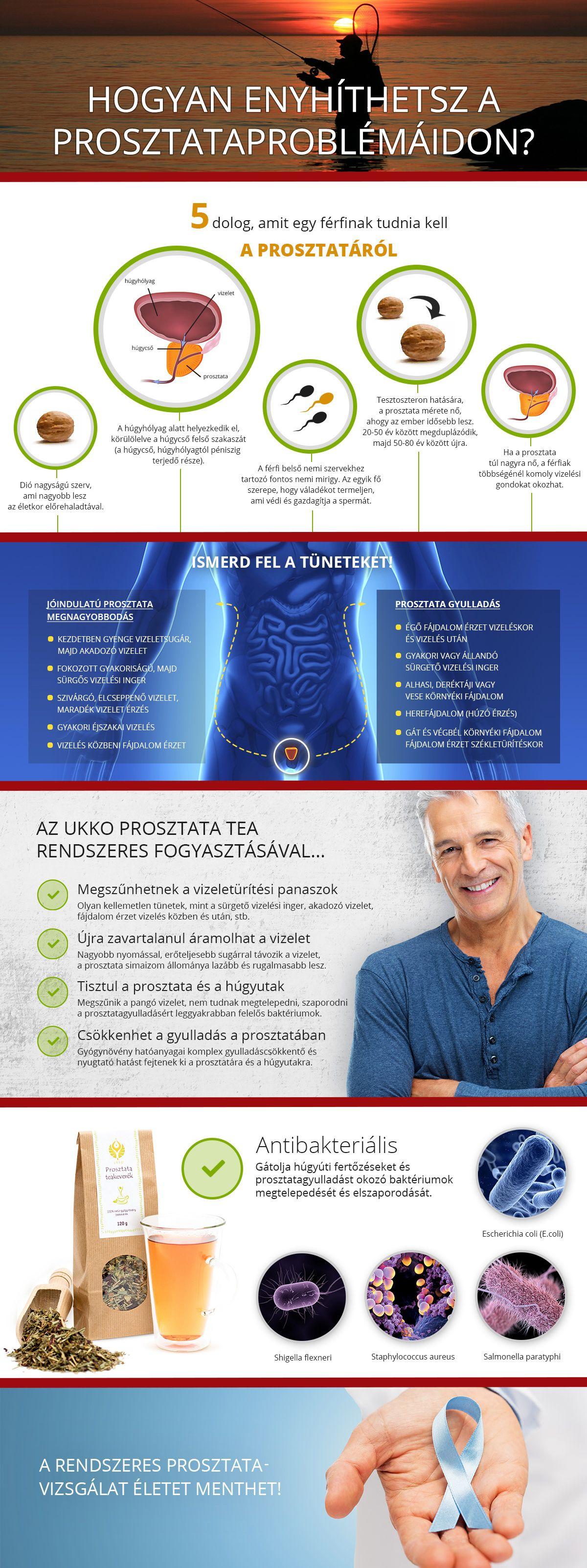 A prosztata betegségei és természetes védelme