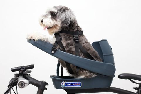 Buddy Rider Dog Bike Seat (UNAVAILABLE UNTIL OCTOBER