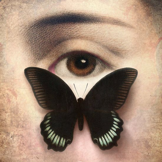 Thank You for Your Love by Christian Schloe