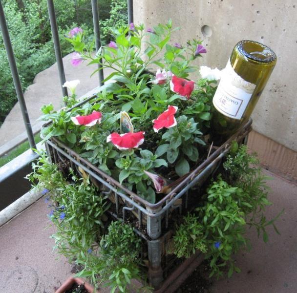 b329067f8979ed53c873e9c769c8f8ca - How To Use Plastic Containers For Gardening