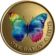 Color Rainbow Butterfly One Day At A Time Medallion Serenity Prayer Br – RecoveryChip