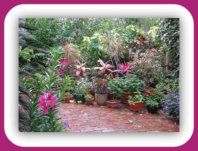 Courtyard Garden courtyards Pinterest Gardens Garden ideas
