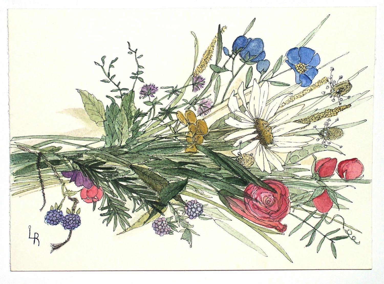 Watercolor Painting Illustration Botanical Garden Flowers Wildflower