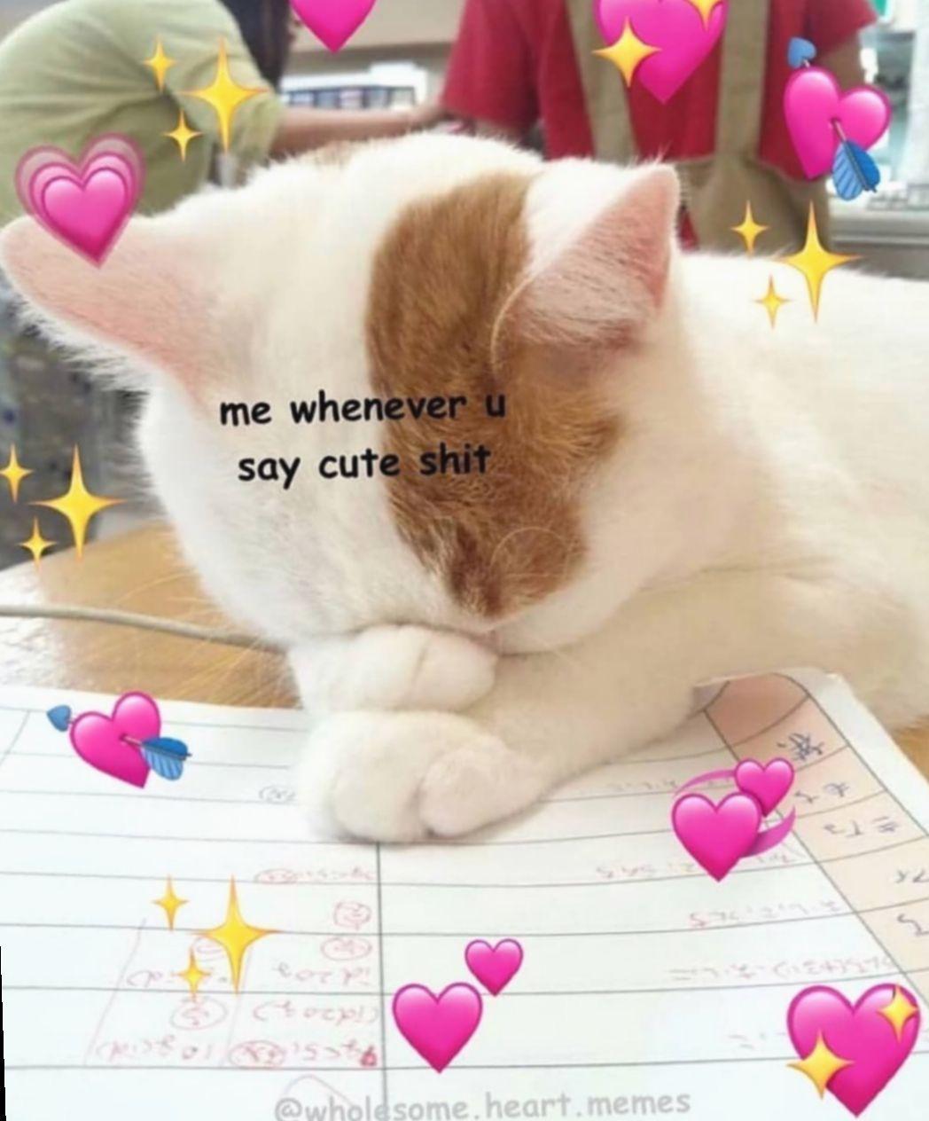 Cute Love Memes For Him Miniensaio Miniensaiodiadascriancas
