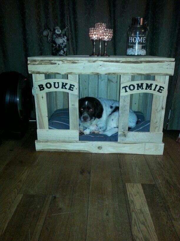 Nieuw huis voor Bouke & Tommie