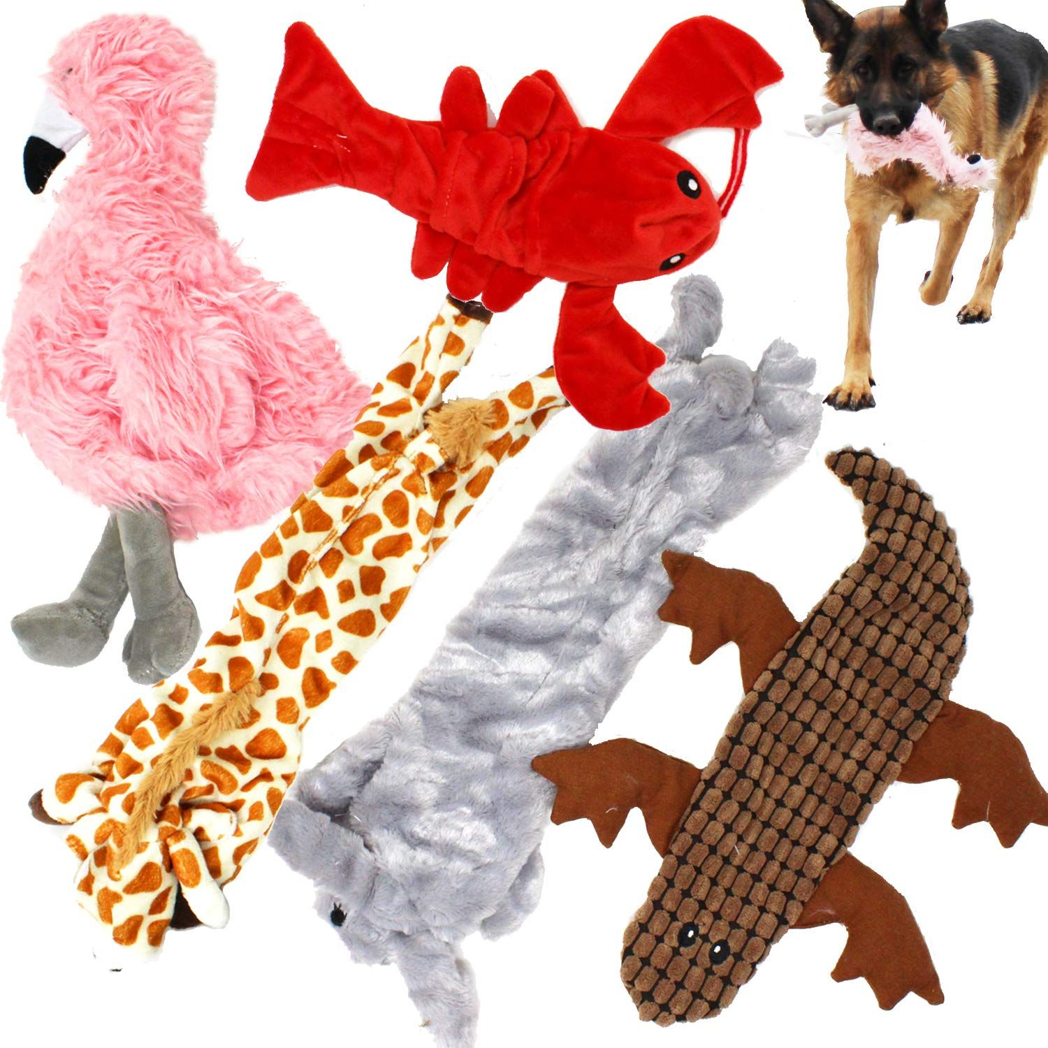 Jalousie 5 Pack Dog Squeaky Toys No Stuffing Dog Plush Toy For