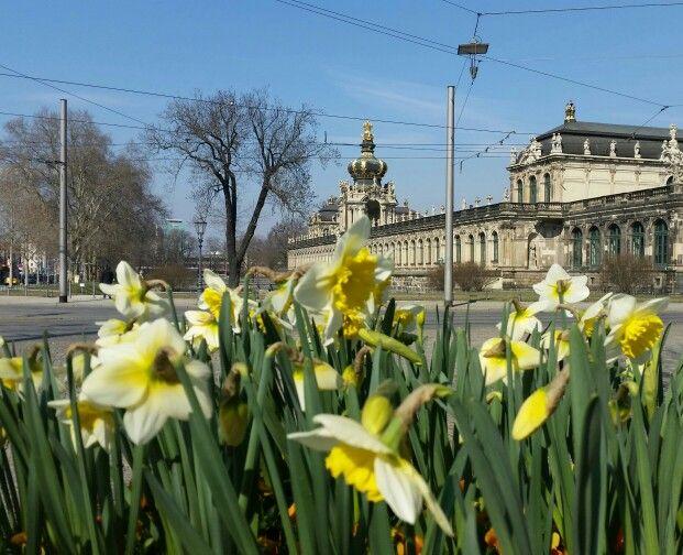Frühlingsanfang in der sächsischen Hauptstadt.