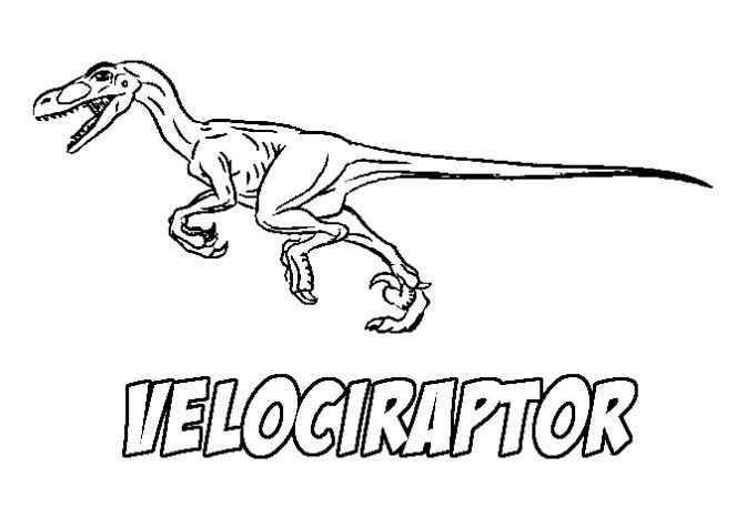 Velociraptor Coloring Pages | Animal Coloring Pages | Pinterest