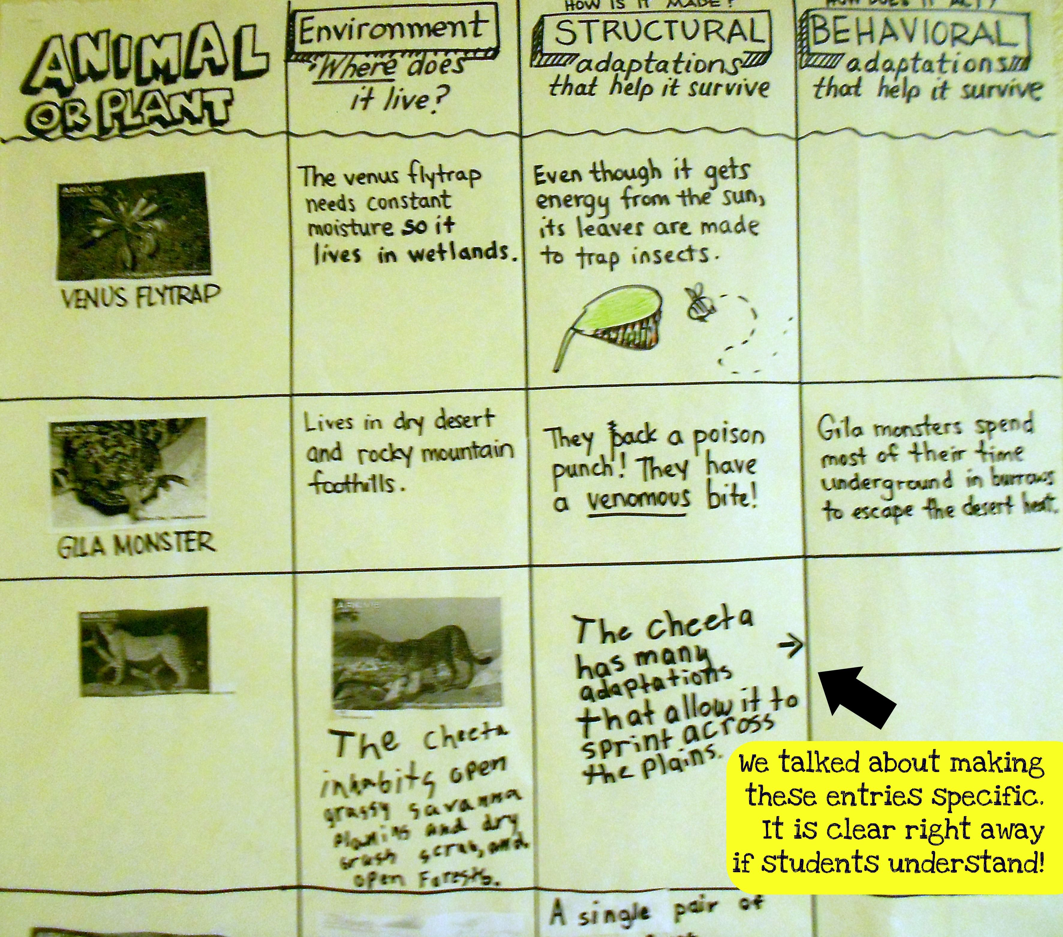 Structural And Behavioral Adaptations Students Used The