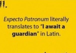 Actually It Means I Am Expecting A Lawyer I Take Latin And If