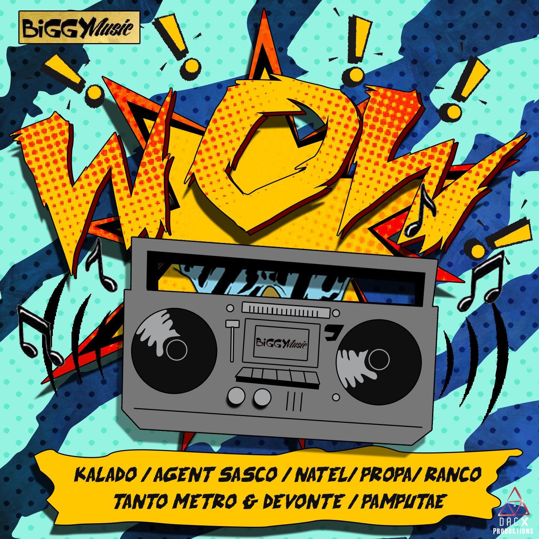 WOW RIDDIM [FULL PROMO] - BIGGY MUSIC FREE ZIP DOWNLOAD