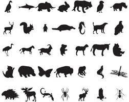 Resultado de imagen para animales silueta