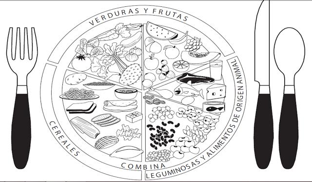 Ciencia Para La Vida Plato Del Buen Comer Plato Del Bien