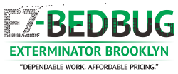 Guaranteed Bed Bug Exterminator In Brooklyn Nyc Extermination Service With Dog Inspection Bed Bug Extermination Bed Bugs Exterminator
