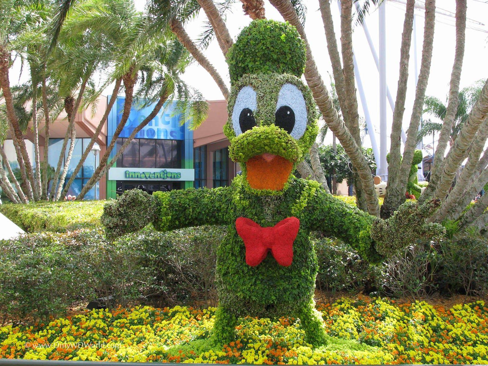 Disney Topiary Part - 15: Disney Topiaries | Donald Duck
