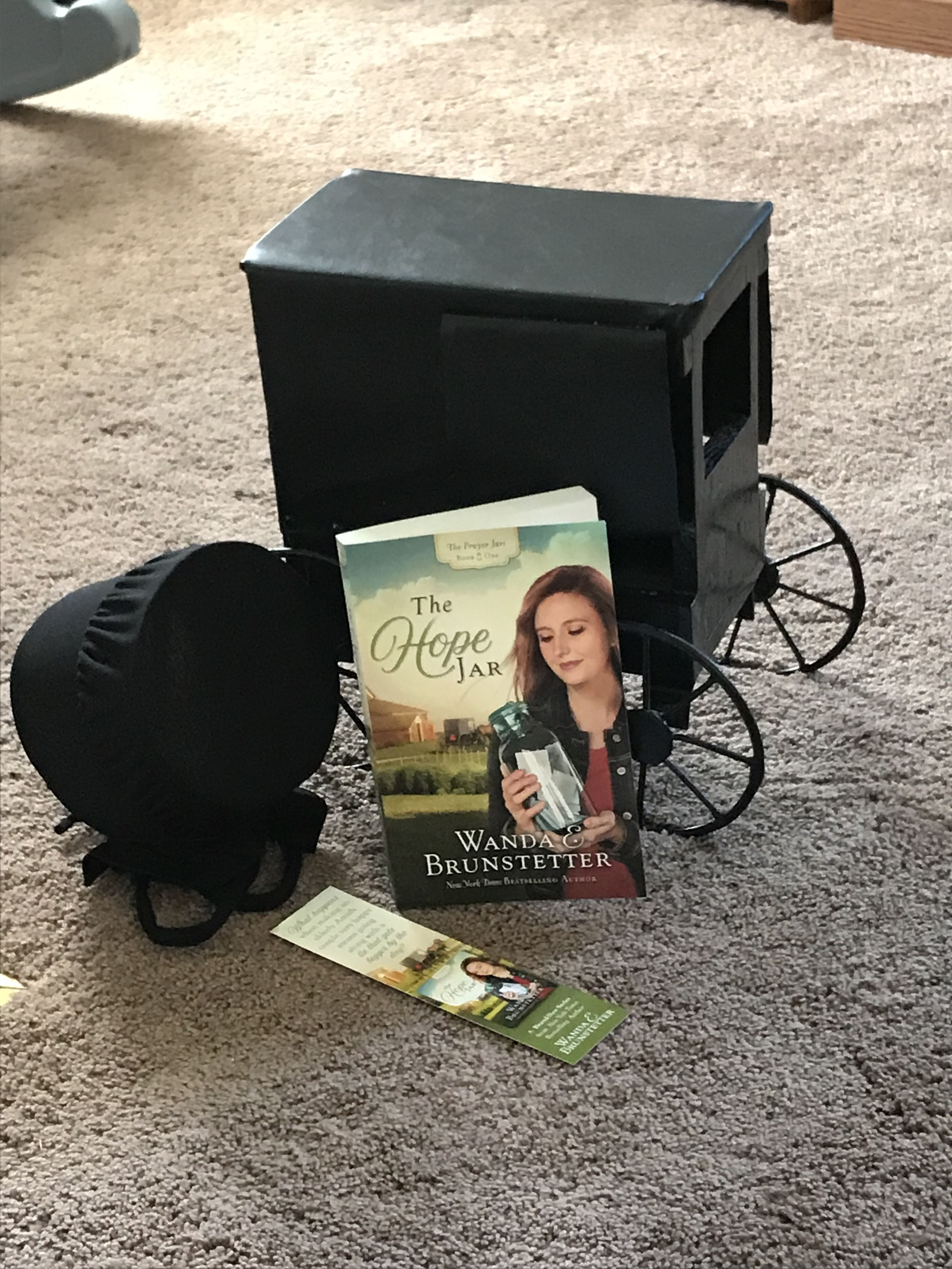 Pin by mary farley on amish books amish books mothers